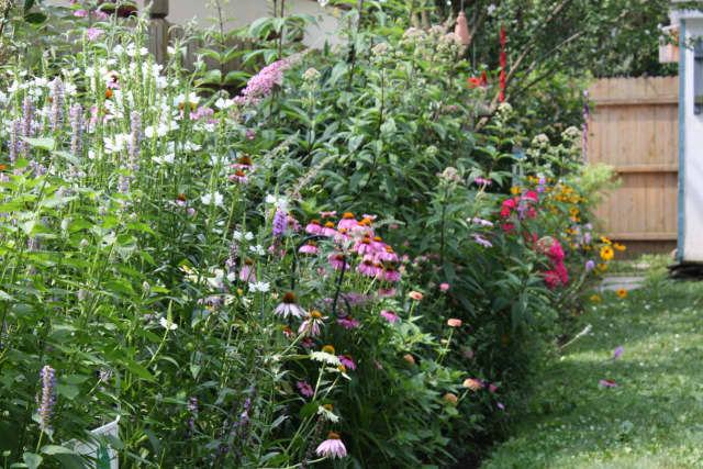 Learn how to create your own wildlife garden with the Bergen County Audobon Society.