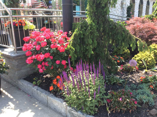 "The Garden Club of Larchmont is to honor the Nautilus Diner for its ""exceptional landscaping."""