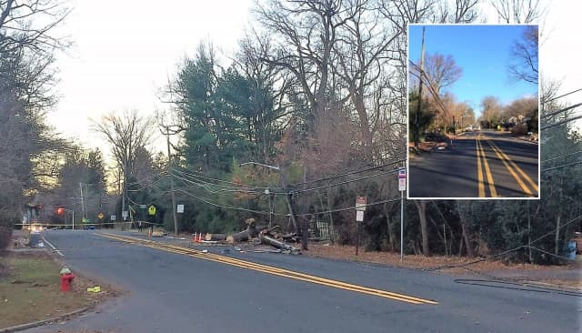 High winds uprooted the tree between Riveredge Road and Sunset Lane – a major travel route for commuters.