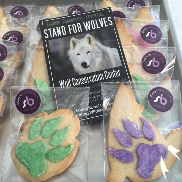 The Wolf Conservation Center will bring Atka the wolf to sherry b, a dessert studio in Chappaqua, for an educational and fundraising event.