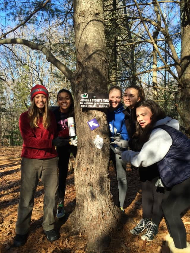 Westport Girl Scouts recently completed a community service project at Aspetuck Land Trust's Leonard Schine Preserve.