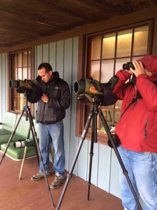 Nick Bonomo, of Wallingford, and Frank Mantlik, of Stratford, spent a recent day birding at Stratford Point.