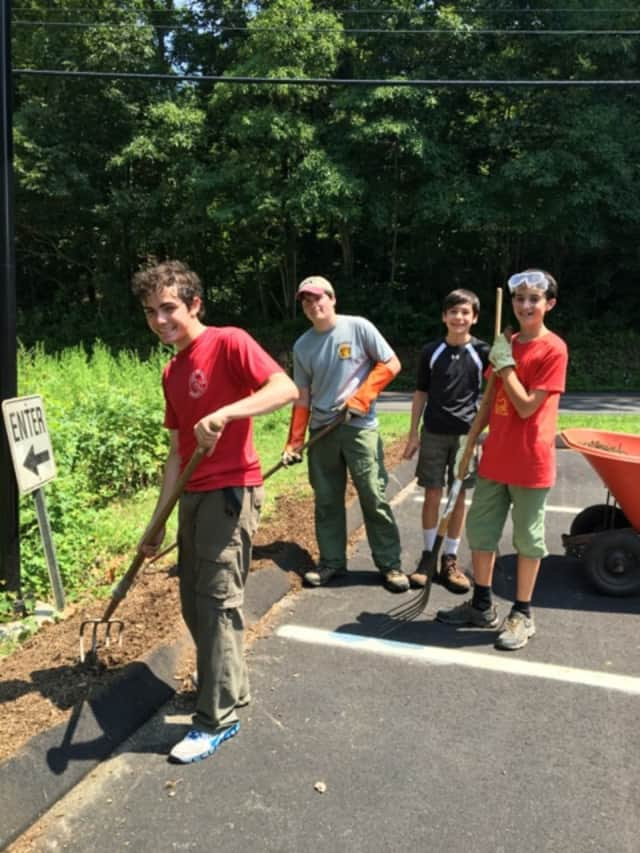 Joe Schiro and volunteers cleared out invasive vines in the Witherell parking lot.