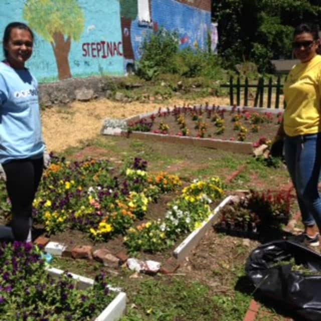 Volunteers work at the community gardens