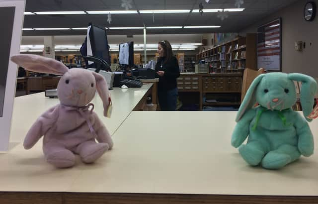 Lodi Larry, a real bunny, will visit the library to commemorate the start of spring.