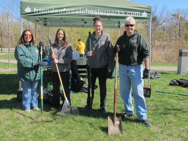Friends of Westchester County Parks recently hosted Pitch in for Parks, its largest one-day volunteer program, which falls around Earth Day each year.