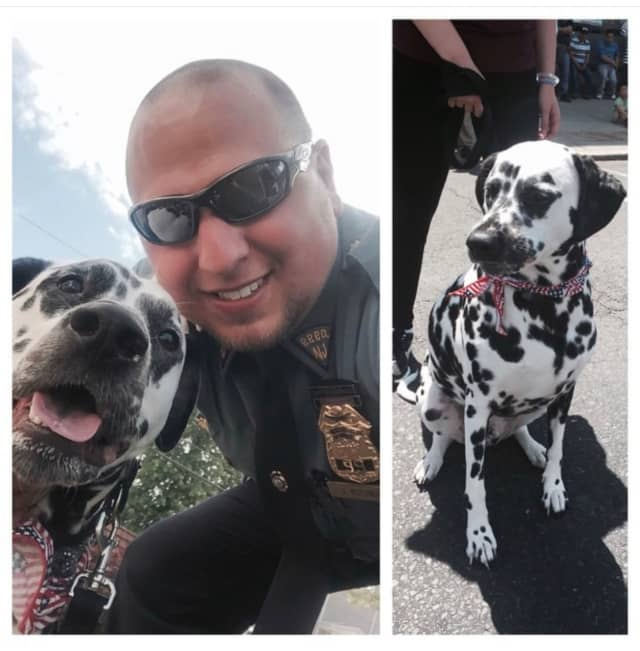 Palisades Police Lt. Jimmy Rotundo adopted Sarge when he was 7 months old. Now 6, the pup knows just how to cheer his dad up after work: Kisses and tail wags.