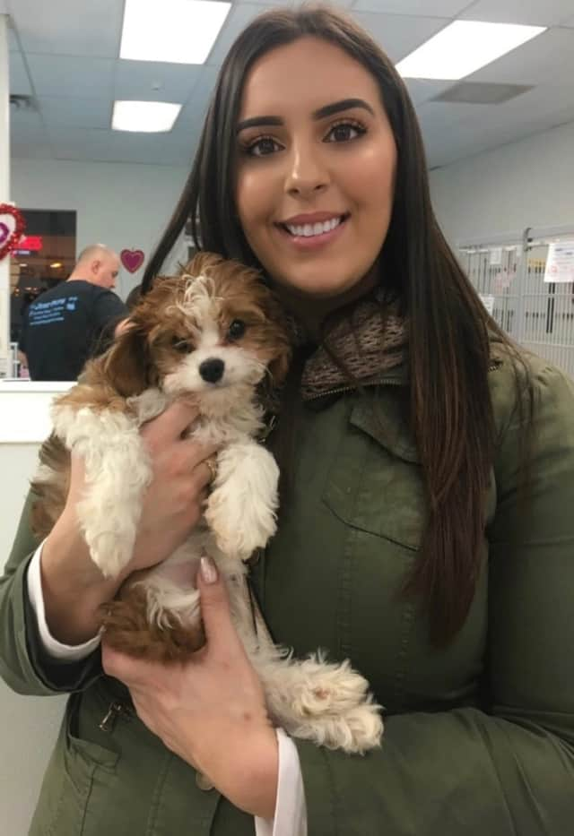 Tania and her beloved pup Mia, who was recovered by the NJSPCA after Emerson's Vincent LoSacco closed his final Just Pups store.