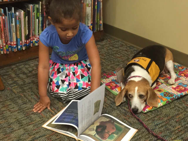 The Rutherford Public Library is giving children opportunities to practice their reading skills on therapy dogs.