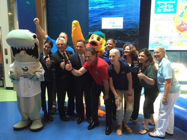 The Maritime Aquarium at Norwalk holds a day of fun and learning with Stewie the Duck and other water safety experts Thursday.