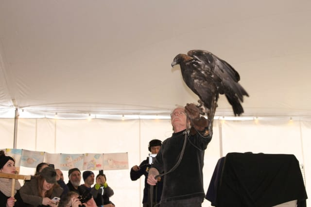 Eaglefest is returning to Croton Point Park next month.