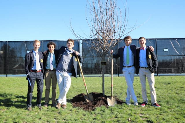 Students planted the tree at Trinity-Pawling School.