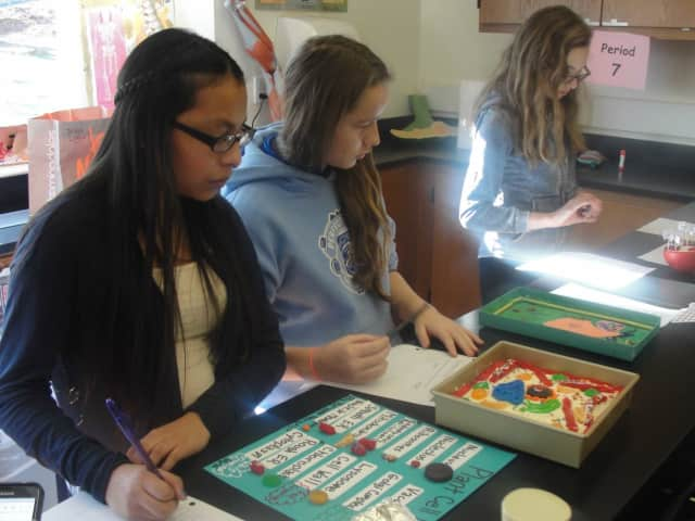 Irvington students work on cell projects.