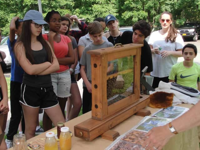 Irvington Middle School students explored the great outdoors during their annual eighth-grade field trip to the O'Hara Nature Center on May 27.