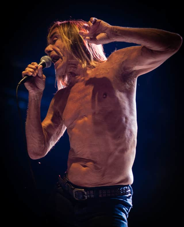 Iggy Pop will take the stage at the Capitol Theatre April 14.