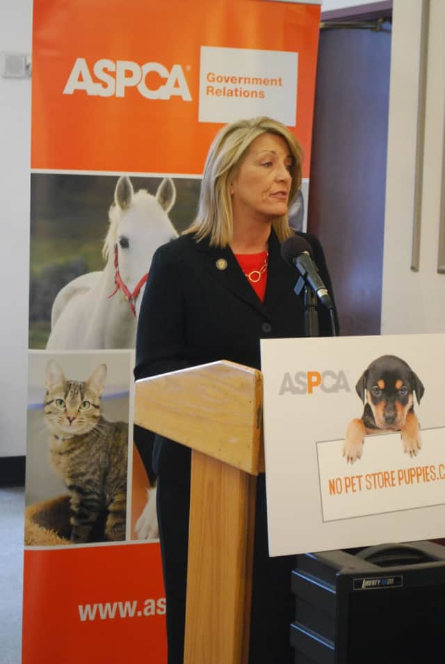 State Rep. Brenda Kupchick of Fairfield introduced legislation that would tighten restrictions on animal shelters in Connecticut.