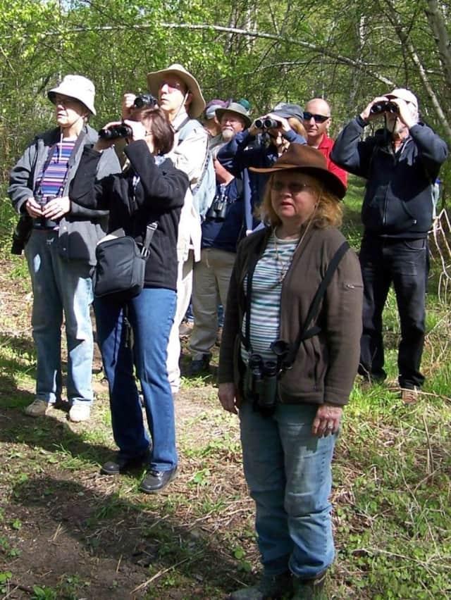 On a recent bird-watching tour at Losen Slote Creek Park.