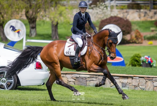 Olympic silver medalist and Old Salem Farm trainer Lucy Davis aboard Caracho 14 at the Spring Horse Shows. Photograph by Jump Media.