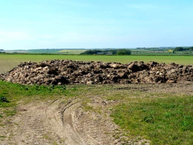 A Bethel farm is being sued due to the pungent odor of its manure.