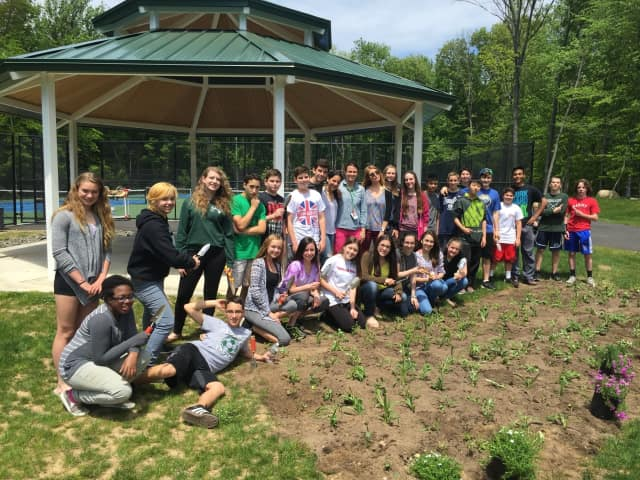 The PVHS Environment Club planted a native pollinator garden by the school's new tennis courts.