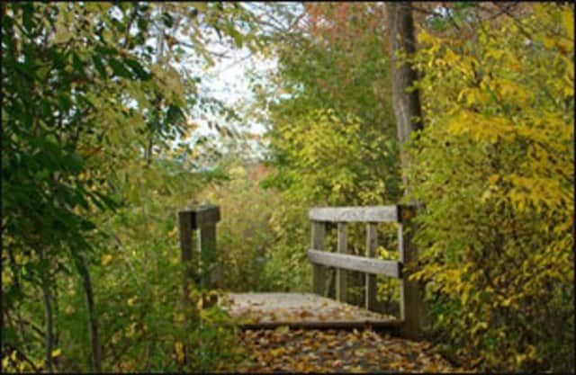Those who attend the breakfast are encouraged to explore the many offerings at Bowdoin Park.