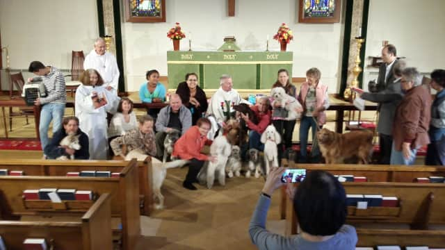 "St. Luke's Episcopal Church in Haworth will offer a ""Blessing of the Animals"" Sunday."