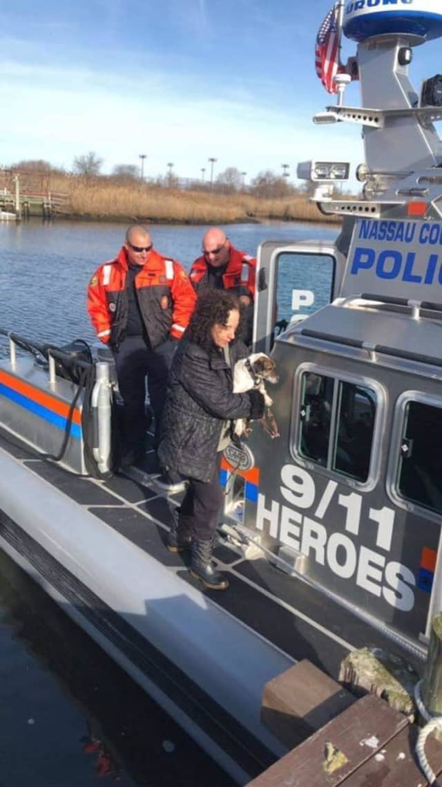 The officers return a dog who was drowning to its owner after rescuing the pup.