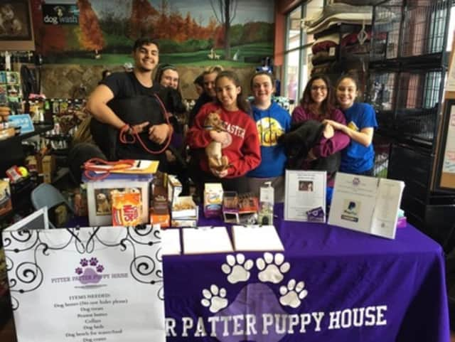 Pitter Patter Puppy House of Lyndhurst will host its first tricky tray fundraiser at the American Legion on Saturday.