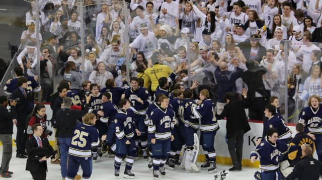 The Ramsey High School hockey team celebrates after winning the Public B state title.