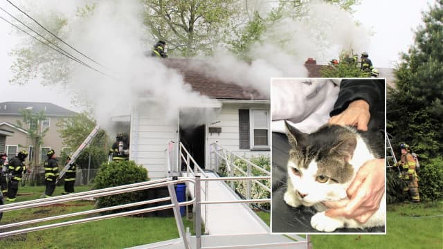 Saddle Brook Police Officer Matt Benus rescued a cat from the Hutter Street fire.