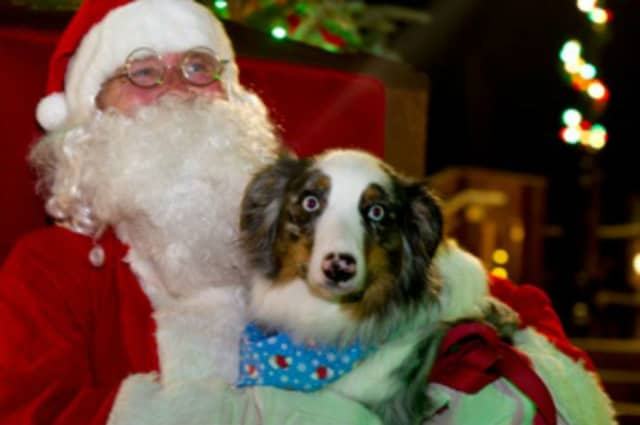 For the ninth year, Santa will be on hand at the Rock Ledge Garden Center in Wayne to have his photo taken with your pet.