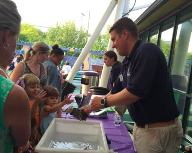 Stepping Stones Museum for Children in Norwalk, Conn., is hosting a literacy event for families Oct. 1. A Maritime Aquarium shows off a critter to children at a recent program at the museum.