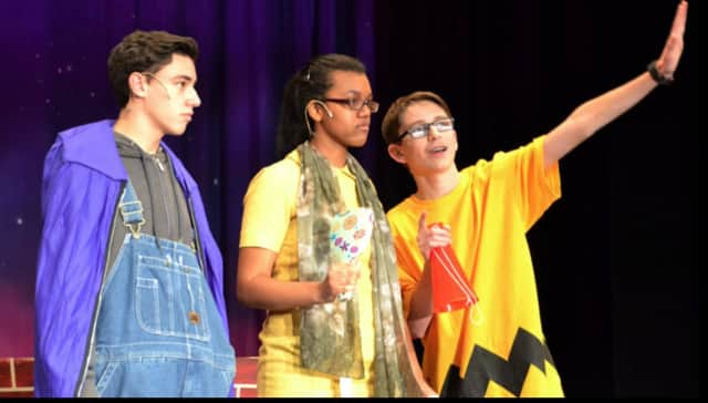 """Not only can visitors help the Valhalla girls varsity team earn money by eating tons of pancakes, they will also be treated to a play """"A Charlie Brown Christmas & Some Other Stuff"""" by the school's theater group."""