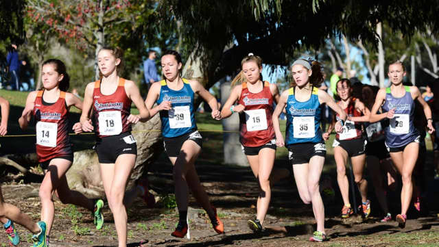 Westport's Hannah DeBalsi, No. 14, runs with a pack of girls at Saturday's Foot Locker cross country national championships in San Diego.