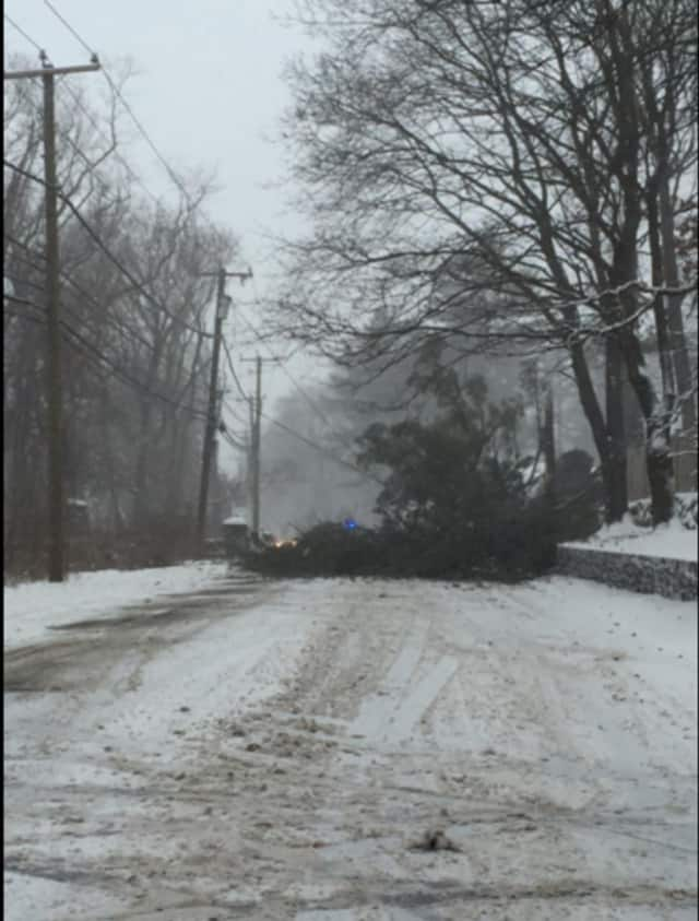 Greenwich Police closed North Street near Greenwich Country Day School in both directions due to a downed tree.