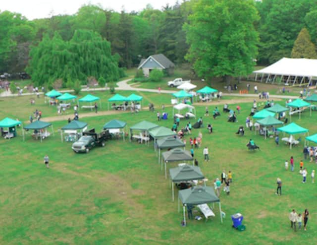 A aerial view of Cranbury Park shows the lineup of exhibitors at the Connecticut Tree Festival at its opening.