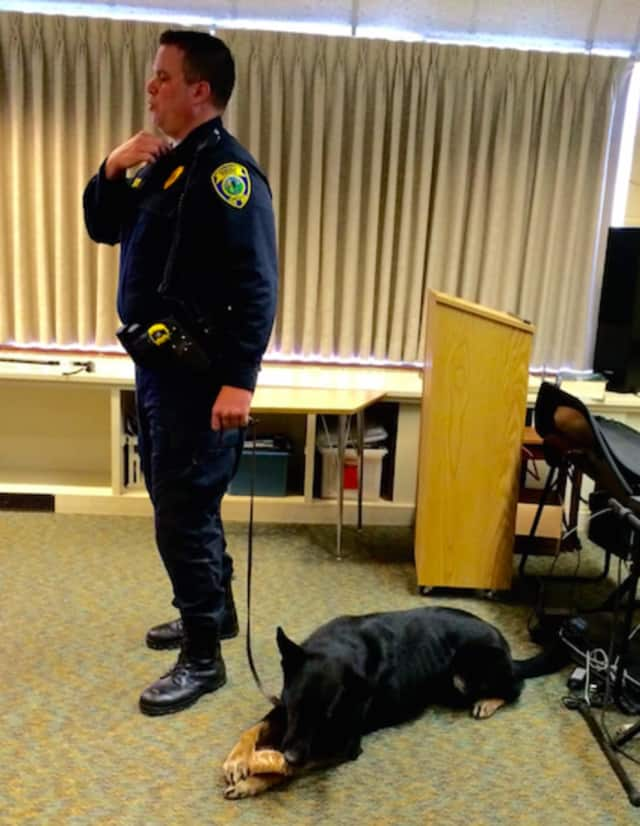 Fairfield K-9 Unit Officer Kevin Wells and his partner, Jagger.