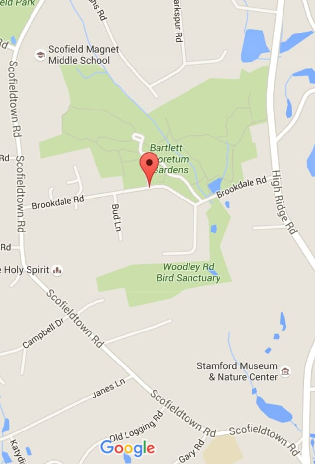 Brookdale Road is closed in Stamford for tree work on Tuesday.