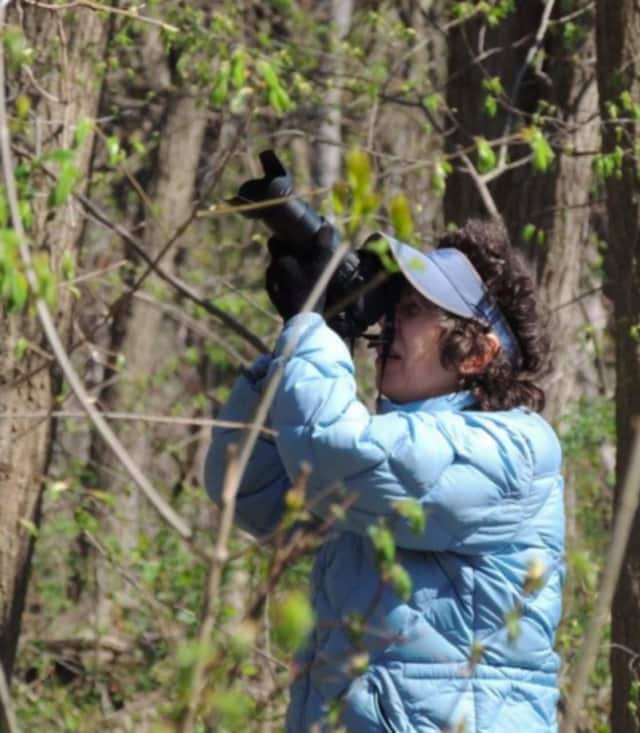 Trails at the Teaneck Creek Conservancy will be closed while trees are removed.