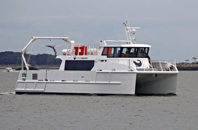 The Maritime Aquarium at Norwalk will offer a series of cruises in March for nature and marine lovers.