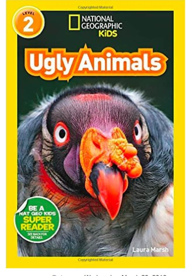 "Author Laura Marsh will discuss and read from her latest book, ""Ugly Animals,"" at the Scarsdale Public Library on March 23 at 4 p.m."