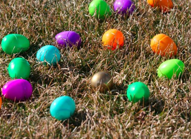 Darien High School Easter egg hunt.