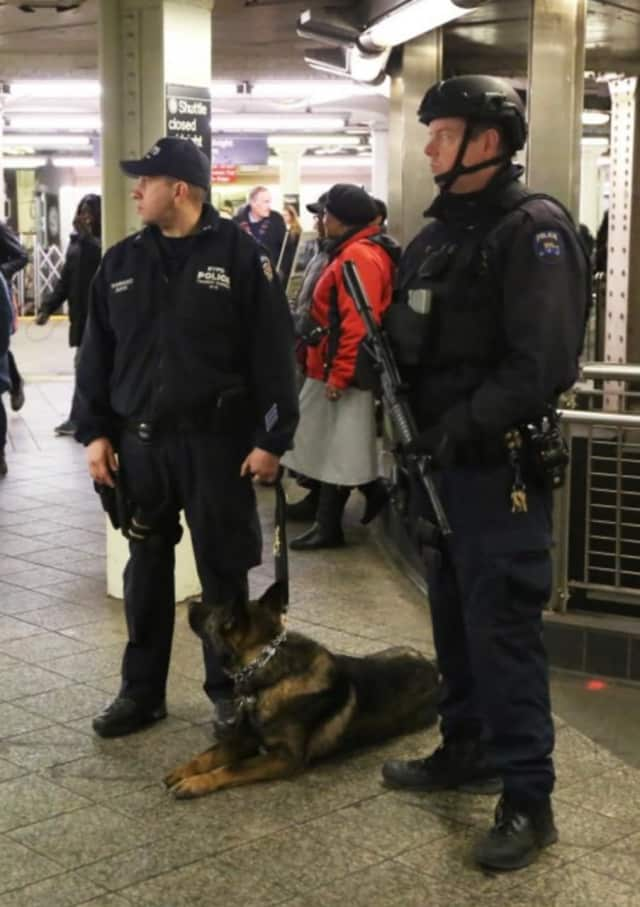NYPD officers and a patrol dog amid heightened security.