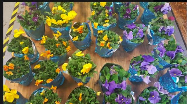 The Hillsdale Fire Department will host an Easter plant sale through Saturday.