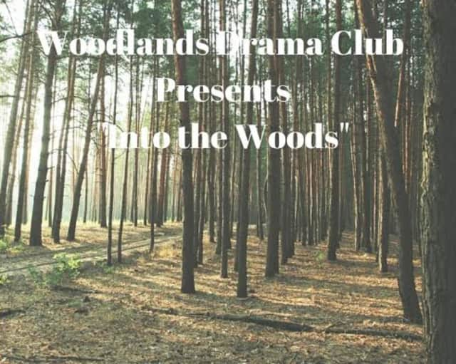 Woodlands High School will be performing 'Into the Woods' as the school's spring Drama Cub performance.