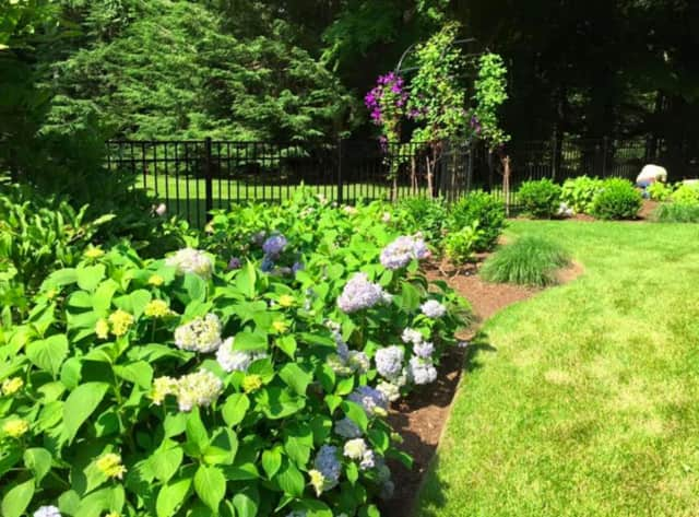 Krys Mernyk from Cornell Cooperative Extension will discuss maximizing small space for successful gardening.