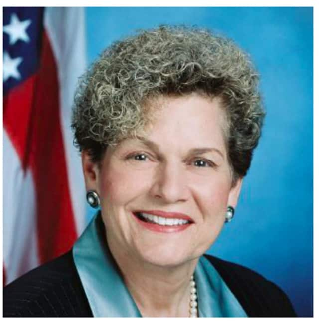 Assemblywoman Ellen Jaffee (D-Rockland)