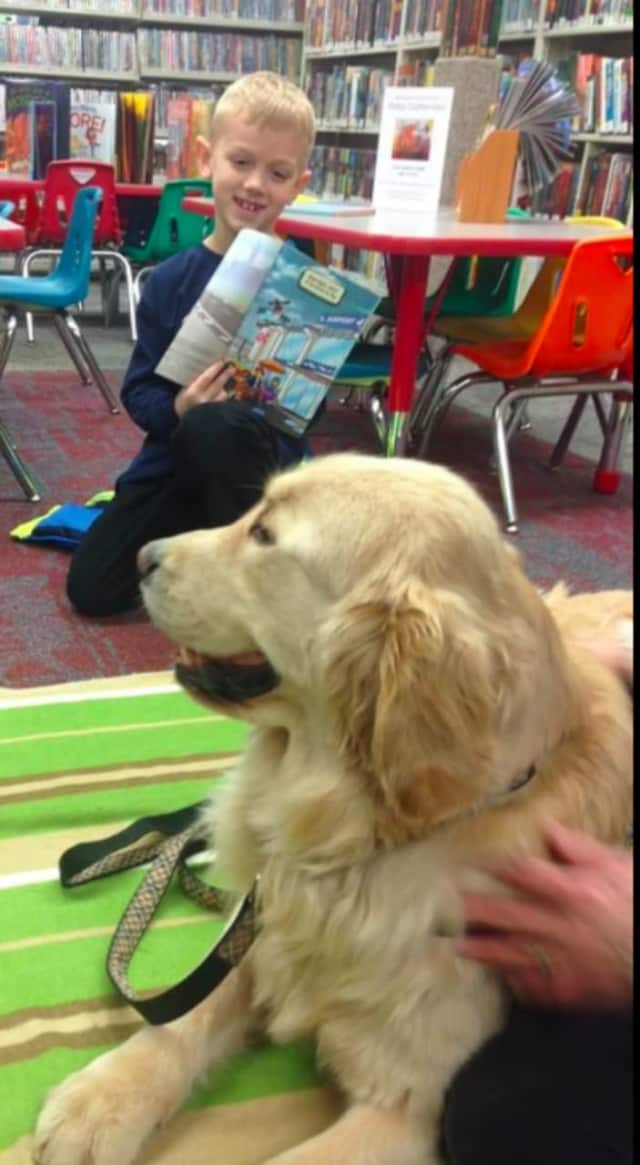 Kids can read to Thatcher, the therapy dog, at the library's ongoing Paws to Read program.