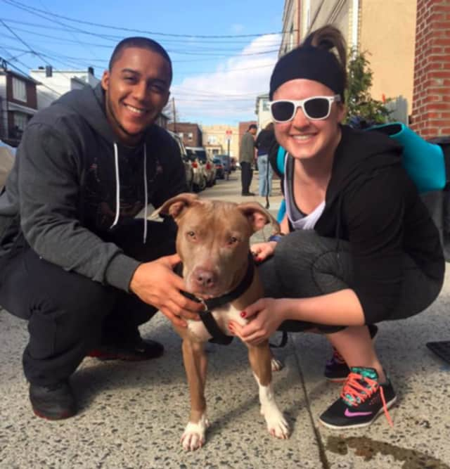 Bergen County Protect and Rescue helped find Mia a home.