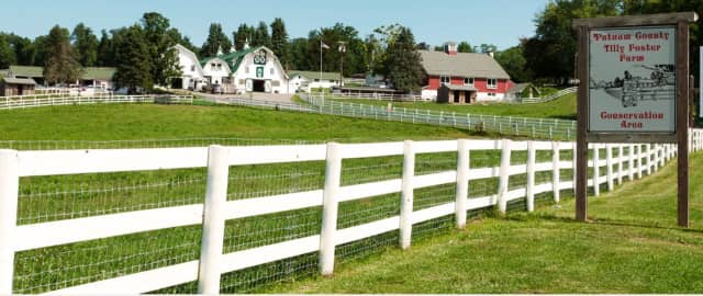 An image of Tilly Foster Farm in Brewster is used in a new digital guide created by Houlihan Lawrence that touts living in Putnam County.